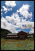 清境雨中行:埔里紙教堂3.jpg