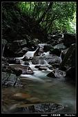 八連溪溪曝:DSC_4628