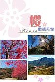 數碼天空-櫻:數碼天空山櫻封面.jpg