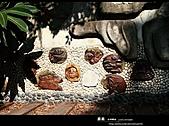 台灣小京都-嘉義史蹟館:嘉義 北門驛站8.jpg