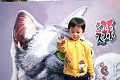 2015春節走春:走春8.jpg
