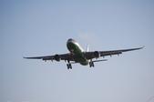 米巴的客機攝影集:1545631975.jpg