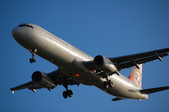 米巴的客機攝影集:1545638530.jpg