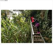忘憂森林:DSC00747.JPG