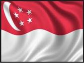 2016新加坡:flg.jpg