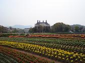 2007  日本  九州:1425105948.jpg