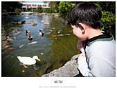 交大一日遊:_DSC1341-編輯.jpg