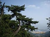 台中市北屯區大坑頭嵙山:IMGP2581.JPG
