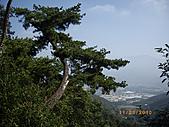 台中市北屯區大坑頭嵙山:IMGP2582.JPG