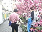 台中市北屯區-我現居住所在文昌國小:IMGP1148.JPG