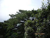 台中市北屯區大坑頭嵙山:IMGP2608.JPG