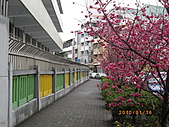 台中市北屯區-我現居住所在文昌國小:IMGP1070.JPG