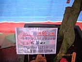 彰化縣社頭鄉清水岩木化石展:稀世珍品 木化石