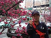 台中市北屯區-我現居住所在文昌國小:IMGP1059.JPG