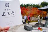 2016日本京都追紅葉:1121-057圓光寺買了拜觀券後是給一本簡介.jpg
