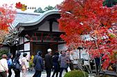 2016日本京都追紅葉:1121-064寺內珍寶琳派畫作被我忽略了.jpg