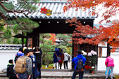 2016日本京都追紅葉:1121-056圓光寺門口人還不少.jpg