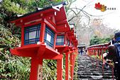 2016日本京都追紅葉:1121-127這裡的宮燈讓我想到母校的宮燈教室.jpg