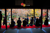 2016日本京都追紅葉:1121-044地上比樹梢紅的圓光寺.jpg