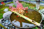 2016日本京都追紅葉:1121-063圓光寺的水琴窟.jpg