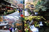2016日本京都追紅葉:1121-123這條小山路走起來其實很有味道.jpg