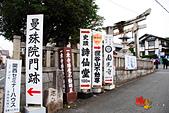 2016日本京都追紅葉:1121-050宮本武藏開悟之地八大神社鳥居.jpg