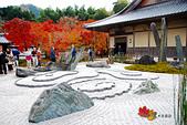2016日本京都追紅葉:1121-061圓光寺有名的枯山水奔龍庭.jpg