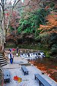 2016日本京都追紅葉:1121-121下車後會沿著河川往上走.jpg