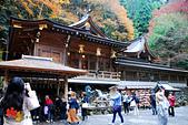 2016日本京都追紅葉:1121-131本宮和手水舍.jpg