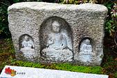 2016日本京都追紅葉:1121-060不知為何很喜歡這個菩薩像.jpg