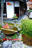 2016日本京都追紅葉:1121-062圓光寺的水琴窟和放墨寶的地方.jpg