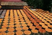 建國百年-大橘大利柿柿如意:201110IMG_7134味衛佳柿餅.JPG