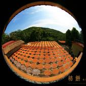 建國百年-大橘大利柿柿如意:201110IMG_7153味衛佳柿餅.JPG