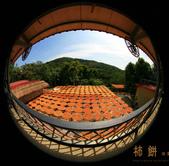 建國百年-大橘大利柿柿如意:201110IMG_7154味衛佳柿餅.JPG