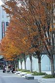 2014大阪車站:201411-TODO3050-大阪城.jpg