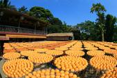 建國百年-大橘大利柿柿如意:201110IMG_7164味衛佳柿餅.JPG