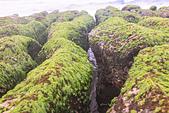 2015老梅綠石槽:TODO7887.jpg