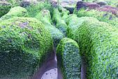 2015老梅綠石槽:TODO7980.jpg