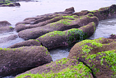 2015老梅綠石槽:TODO7995.jpg