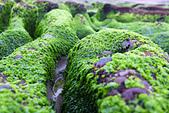 2015老梅綠石槽:TODO7989.jpg