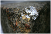 士林區之軍艦岩:20090402芝山岩42.JPG