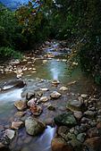 天母公園磺溪:20081219天母公園9582.jpg
