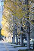 2014大阪車站:201411-TODO3049-大阪城.jpg