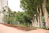 台北市士林區原住民公園:20080422_原住民公園002.jpg