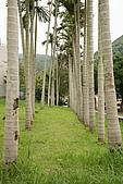 台北市士林區原住民公園:20080422_原住民公園005.JPG