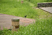 台北市士林區原住民公園:20080422_原住民公園015.jpg