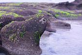 2015老梅綠石槽:TODO7996.jpg