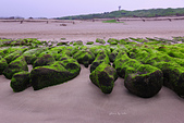 2015老梅綠石槽:TODO7968.jpg