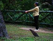 天母公園磺溪:20081219天母公園9593.jpg