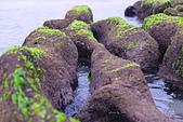 2015老梅綠石槽:TODO7998.jpg